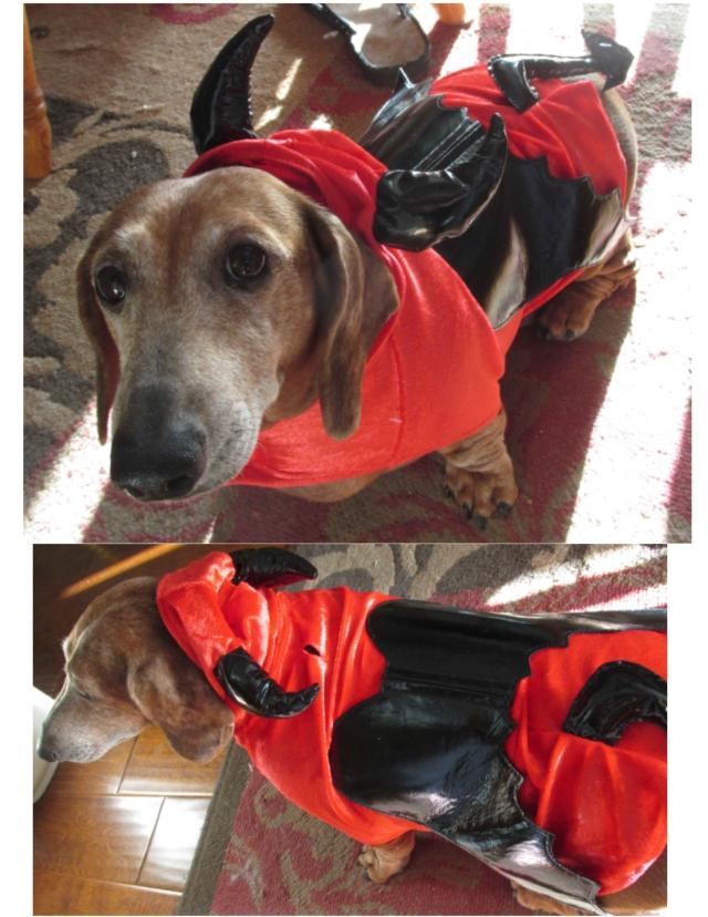 Brutus Halloween Costume