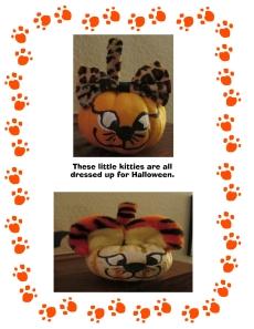 kitten pumpkins