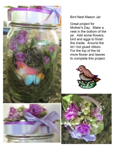 Bird Nest Mason Jar