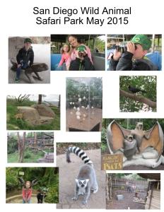 SD Animal Park2