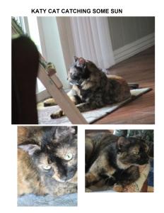 KATY CAT 2