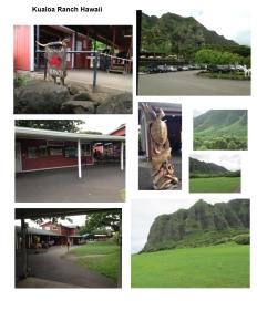 kualoa-hawaii