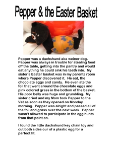 pepper-the-dog