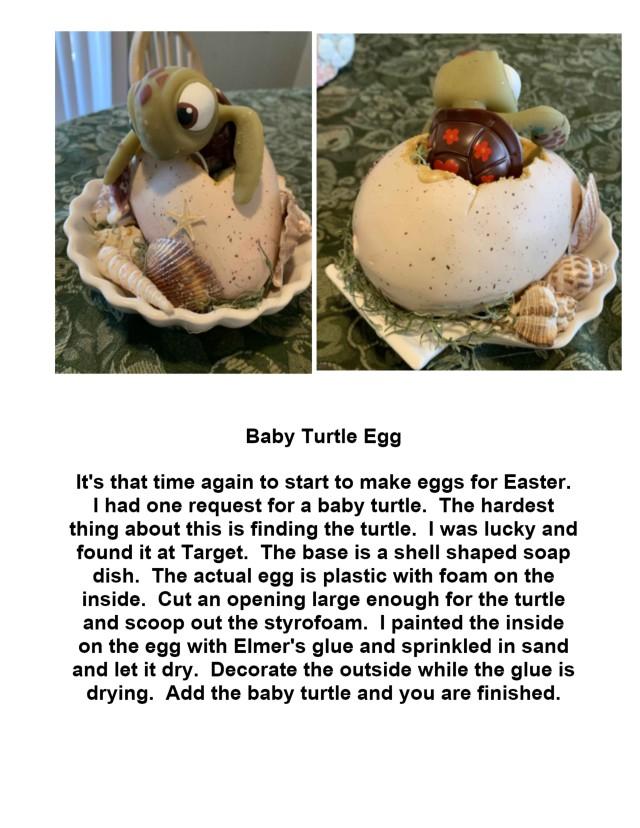 baby turtle egg